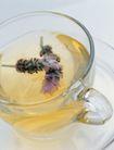 花草茶饮0049,花草茶饮,生活,花茶