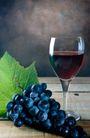 葡萄酒0048,葡萄酒,生活,