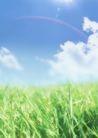 绿色生态环境