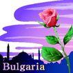 国家与鲜花0008,国家与鲜花,分层花纹,保加利亚  玫瑰花 亲爱的父母邦 波希米亚王国 共和国