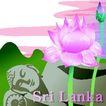 国家与鲜花0012,国家与鲜花,分层花纹,斯里兰卡 荷花瓣 圣洁 吉祥 丰收