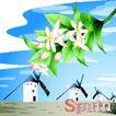 国家与鲜花0015,国家与鲜花,分层花纹,荷兰 景观 风车