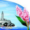 国家与鲜花0034,国家与鲜花,分层花纹,海边 海水 Cuba