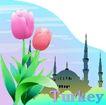 国家与鲜花0036,国家与鲜花,分层花纹,房子 Turkey 国花