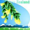 国家与鲜花0046,国家与鲜花,分层花纹,山 雪山 New Zealand