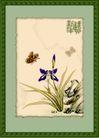 国画风景0001,国画风景,分层花纹,画框 蝴蝶花 蝶恋花 水彩画 生态