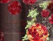 图形花纹背景0012,图形花纹背景,分层花纹,杂乱 草叶 暗色