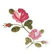 小花纹系列0041,小花纹系列,分层花纹,小虫 攀爬 叶尖