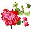 小花纹系列0044,小花纹系列,分层花纹,大红 花簇 绿叶