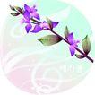 矢量花卉0027,矢量花卉,分层花纹,紫花 枝叶 稀少