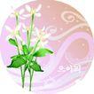 矢量花卉0030,矢量花卉,分层花纹,时尚