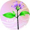 矢量花卉0045,矢量花卉,分层花纹,搭配 树枝 枝节