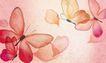 花卉0002,花卉,分层花纹,透明 粉蝶 落花