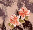 花纹边框0244,花纹边框,分层花纹,两朵大花 粉红色 四片叶子
