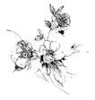 花纹边框0268,花纹边框,分层花纹,