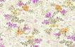 花纹边框0269,花纹边框,分层花纹,