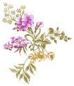 花纹边框0270,花纹边框,分层花纹,