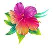 视觉花纹设计0097,视觉花纹设计,分层花纹,水彩 花样 色泽
