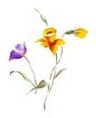 视觉花纹设计0114,视觉花纹设计,分层花纹,