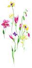 视觉花纹设计0118,视觉花纹设计,分层花纹,