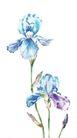 视觉花纹设计0122,视觉花纹设计,分层花纹,