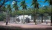 公园广场景观0021,公园广场景观,国内建筑设计案例,阳光 树 道路