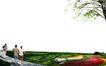 广场绿化环境设计0101,广场绿化环境设计,国内建筑设计案例,
