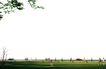 广场绿化环境设计0102,广场绿化环境设计,国内建筑设计案例,