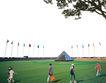 广场绿化环境设计0115,广场绿化环境设计,国内建筑设计案例,