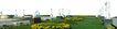 广场绿化环境设计0121,广场绿化环境设计,国内建筑设计案例,