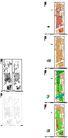 广州传统中轴线城市设计0034,广州传统中轴线城市设计,国内建筑设计案例,