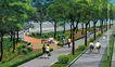 道路化-景观0012,道路化-景观,国内建筑设计案例,绿化 树木 环境