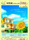 碧桂园0009,碧桂园,房地产广告模板,花园里 凤凰城 向日葵