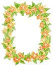 花卉边框0009,花卉边框,纹理边框,花卉 绿叶 红花