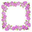 花卉边框0012,花卉边框,纹理边框,