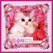 花卉边框0053,花卉边框,纹理边框,可爱 猫眯 偎缩