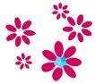 PSD花纹10042,PSD花纹1,花纹图案,星形 粉红 花瓣