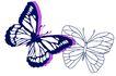 PSD花纹10053,PSD花纹1,花纹图案,比较 飞蝶 舞姿