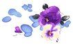 PSD花纹20001,PSD花纹2,花纹图案,水彩 素画 斑痕