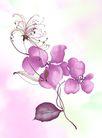 PSD花纹20018,PSD花纹2,花纹图案,花丛 散落 花瓣