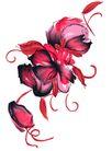PSD花纹40100,PSD花纹4,花纹图案,艳丽 花色 卷丝