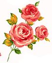 PSD花纹50034,PSD花纹5,花纹图案,大红 花簇 富贵