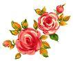 PSD花纹50035,PSD花纹5,花纹图案,灿烂 盛开 春意