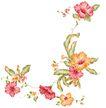 PSD花纹50054,PSD花纹5,花纹图案,野生 豆角 种子
