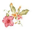 PSD花纹50057,PSD花纹5,花纹图案,细小 花蕊 开放