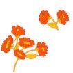 PSD花纹50064,PSD花纹5,花纹图案,红色 花簇 拥护