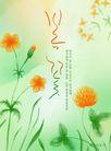 韩国新潮背景10018,韩国新潮背景1,韩国新潮背景,花草 野花 生物