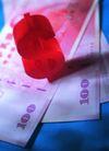 投资胜算0049,投资胜算,金融,红色符号