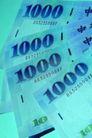 货币流通0057,货币流通,金融,中文 面值 等价物