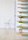 植物与空间0149,植物与空间,生活,居室植物